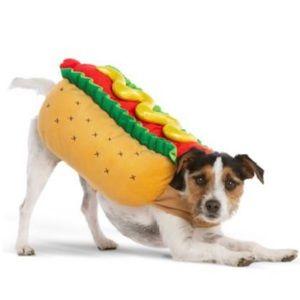 Other - Halloween Hot Dog Pet Costume | Medium